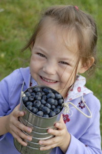 Blueberry Kid